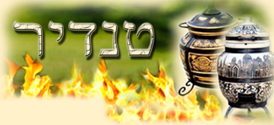 טנדור (טנדיר) בישראל ❤️ טנדור – מחיר נוח לטנדורים – קטלוג גדול בישראל טנדיר